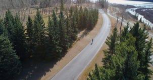 Ciclista che cicla tramite una strada campestre in foresta 4k video d archivio