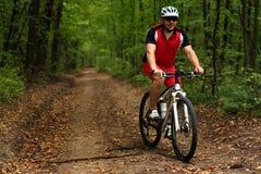 Ciclista com sua bicicleta na floresta do verão Imagens de Stock