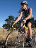 Ciclista da estrada Fotografia de Stock