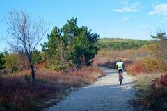 Ciclista de la bici de montaña Imagen de archivo libre de regalías