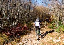 Ciclista de la bici de montaña Imagen de archivo
