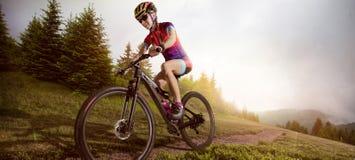 Ciclista del mountain bike che guida singola pista fotografia stock