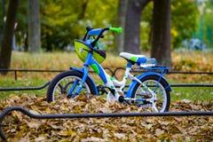 Ciclista di Roostechildren fotografia stock
