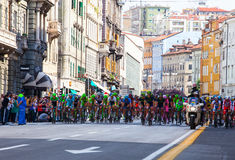 Ciclista, dItalia do Giro Imagem de Stock Royalty Free