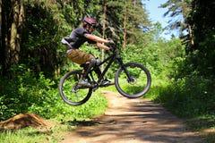 Ciclista en bosque Imagenes de archivo