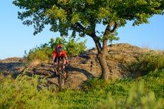Ciclista en la bici de montaña roja de la chaqueta y del montar a caballo del casco abajo Rocky Hill cerca del árbol verde hermos Imágenes de archivo libres de regalías