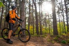 Ciclista en la reclinación con la bici de montaña en el rastro en bosque hermoso del pino y la mirada de Sun Aventura y viaje Imagen de archivo
