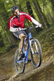 Ciclista estremo di MTB Immagini Stock