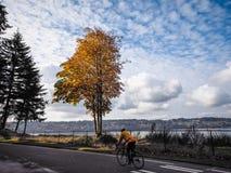 Ciclista a lo largo del sonido Foto de archivo libre de regalías