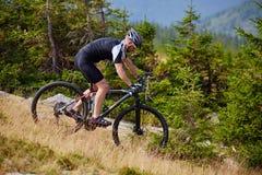 Ciclista in mountain-bike sulle tracce Fotografie Stock Libere da Diritti