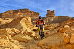 Ciclista in mountain-bike in un deserto Fotografie Stock Libere da Diritti