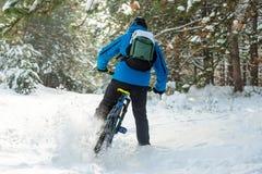 Ciclista na derivação azul no Mountain bike no inverno bonito Forest Extreme Sport e no conceito Biking de Enduro Foto de Stock Royalty Free