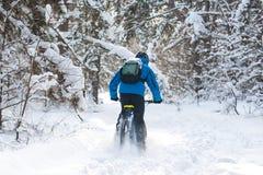 Ciclista na derivação azul no Mountain bike no inverno bonito Forest Extreme Sport e no conceito Biking de Enduro Fotos de Stock Royalty Free