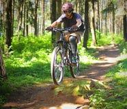 Ciclista na floresta Fotos de Stock Royalty Free