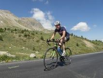 Ciclista nei graslands di alte alpi Immagine Stock Libera da Diritti