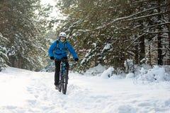 Ciclista no azul que monta o Mountain bike no inverno bonito Forest Extreme Sport e no conceito Biking de Enduro Imagens de Stock