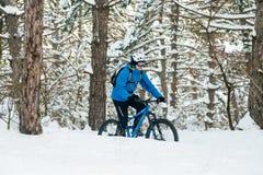 Ciclista no azul que monta o Mountain bike no inverno bonito Forest Extreme Sport e no conceito Biking de Enduro Fotos de Stock Royalty Free