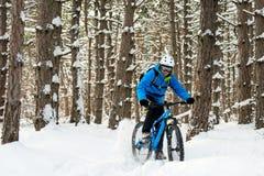 Ciclista no azul que monta o Mountain bike no inverno bonito Forest Extreme Sport e no conceito Biking de Enduro Imagem de Stock