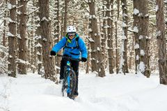Ciclista no azul que monta o Mountain bike no inverno bonito Forest Extreme Sport e no conceito Biking de Enduro Foto de Stock Royalty Free