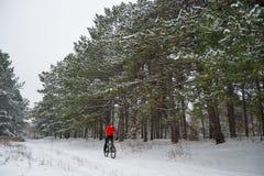 Ciclista no Mountain bike vermelho da equitação no inverno bonito Forest Extreme Sport e no conceito Biking de Enduro Fotos de Stock Royalty Free