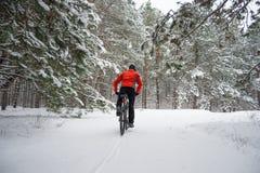 Ciclista no Mountain bike vermelho da equitação no inverno bonito Forest Extreme Sport e no conceito Biking de Enduro Imagens de Stock