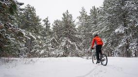 Ciclista no Mountain bike vermelho da equitação no inverno bonito Forest Extreme Sport e no conceito Biking de Enduro Imagens de Stock Royalty Free