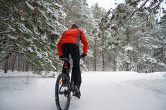 Ciclista no Mountain bike vermelho da equitação no inverno bonito Forest Extreme Sport e no conceito Biking de Enduro Foto de Stock Royalty Free