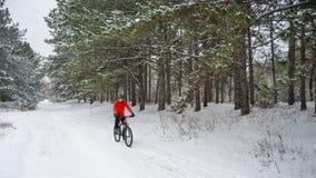 Ciclista no Mountain bike vermelho da equitação no inverno bonito Forest Extreme Sport e no conceito Biking de Enduro Fotos de Stock