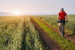 Ciclista novo com o ciclista da montanha no trajeto do campo no campo contra o nascer do sol Imagens de Stock