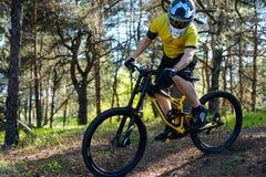 Ciclista profesional en camiseta amarilla y casco que monta la bici de montaña en Forest Extreme Sport Concept Fotografía de archivo