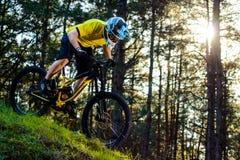 Ciclista profesional en camiseta amarilla y casco que monta la colina de la bici abajo en Forest Extreme Sport Concept Fotografía de archivo