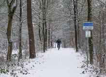 Ciclista que biking inteiramente dentro em uma estrada coberto de neve branca, dando um ciclo em uma paisagem nevado da floresta fotografia de stock royalty free