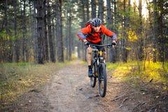 Ciclista que monta la bici en el rastro en Forest Extreme Sport Foto de archivo libre de regalías