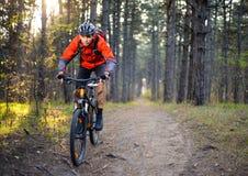 Ciclista que monta la bici en el rastro en Forest Extreme Sport Imágenes de archivo libres de regalías