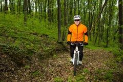 Ciclista que monta la bici en un rastro en bosque del verano Foto de archivo libre de regalías