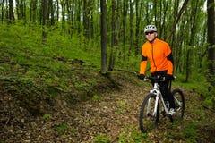 Ciclista que monta la bici en un rastro en bosque del verano Foto de archivo