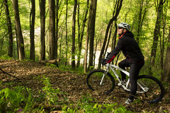 Ciclista que monta la bici en un rastro en bosque del verano Imagenes de archivo