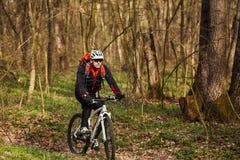 Ciclista que monta la bici en un rastro en bosque del verano Imagen de archivo