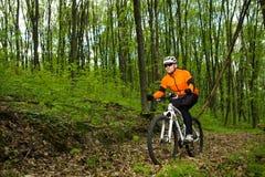 Ciclista que monta la bici en un rastro en bosque del verano Fotos de archivo