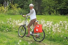 Ciclista sênior da senhora Imagens de Stock