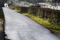 Ciclista solitario Fotos de archivo