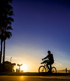 Ciclista sul sole Fotografie Stock