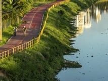 Ciclista sulla pista ciclabile vicino del fiume di Pinheiros, costa Ovest di Sao Paulo fotografia stock libera da diritti