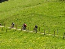 Ciclistas Fotos de archivo libres de regalías