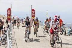 Ciclistas aficionados en el soporte Ventoux Imágenes de archivo libres de regalías