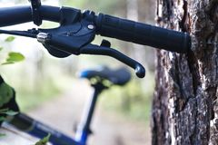 Ciclistas da floresta Fotos de Stock Royalty Free