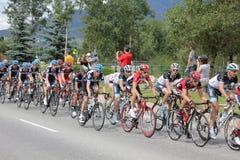 Ciclistas de ciclagem do estágio 5 do desafio dos EUA PRO Imagens de Stock Royalty Free