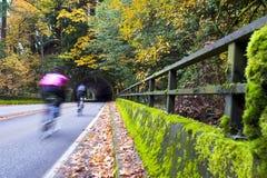 Ciclistas na estrada do outono com ponte e túnel Fotos de Stock Royalty Free