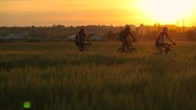 Ciclistas que montan las bicicletas metrajes