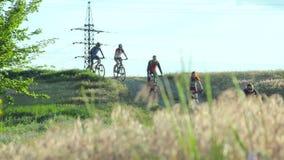 Ciclisti che corrono giù la collina video d archivio